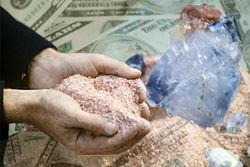 Сбербанк реинвестировал Беларуськалию кредит на 1 млрд. долларов