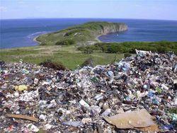 В Минприроды России готовится налог на мусор - выводы