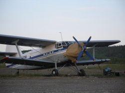 Руководство Свердловской полиции будет наказано за инцидент с пропавшим Ан-2
