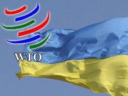 Против Украины выступили все страны ВТО, обвинив её в протекционизме