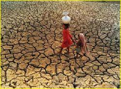 Засуха - новая константа мирового развития