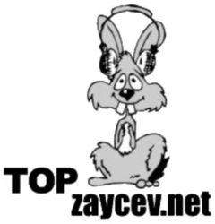 Сайт Zaycev.net запустил рекламу алкоголя в плеере