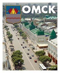 Кто станет новым мэром Омска?