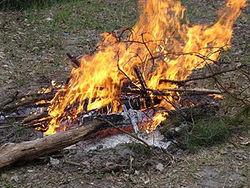 Разжигая костер при помощи бензина, новгородский мальчик получил серьезной степени ожоги