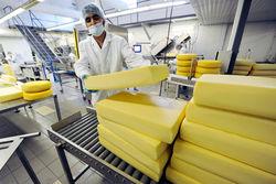 Украинская компания Milkiland купила сырзавод в Польше