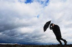 Сильный и порывистый ветер ожидают в Москве