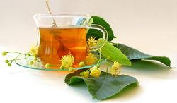 """Полезность """"кофейного чая"""" смогли доказать только ботаники"""