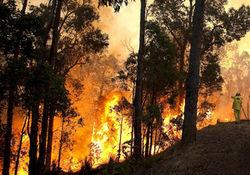 На территории Сибири горит больше 10 тыс. гектаров леса