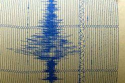 Сейсмологи предупреждают: у берегов Камчатки возможны новые сильные толчки