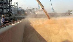 Россия экспортировала 10 млн. тонн зерна