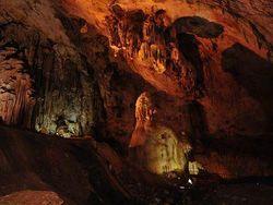 Палеонтологи сделали невероятное открытие в Крыму