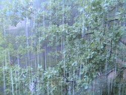Погода на Кубани может ухудшиться