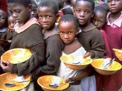 ООН опасается нового глобального продовольственного кризиса