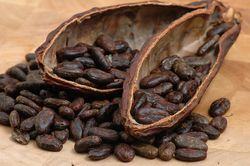 Обзор рынка какао