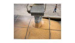 100 тыс. тонн мягкой пшеницы было закуплено Сирией