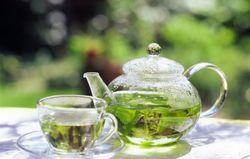 Ученые: зеленый чай активизирует память