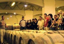 Когда в Армении появятся маршруты винного туризма?