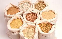 Украина с 2012-2013 МГ планирует нарастить экспорт зерна на 5 млн. тонн