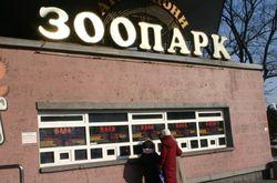 Зоопарк Киева резко поднял цены на билеты и ввел месячные абонементы