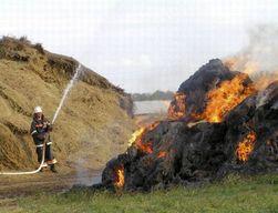 500 тонн сена сгорело в Восточном Казахстане