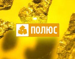 Дивиденды за 9 месяцев 2012 года акционерам «Полюс золота» выплатят в объёме 62,95 руб. за акцию