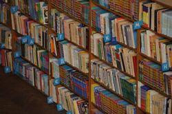 Библиотеке украинской литературы