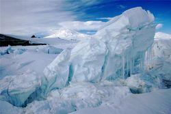 В Антарктиде ученые нашли новый вид жизни