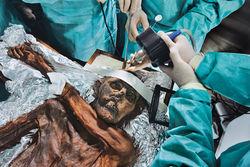 У ледяного Отци найдены древнейшие образцы крови