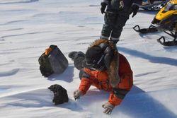 """18-килограммовый метеорит в Антарктике был больше """"челябинского"""" - ученые"""