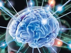 """Ученые услышали как """"играет"""" людской мозг"""