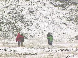 Природная аномалия в Грузии: среди лета выпал снег