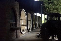 В Грузии реставрируют уникальный винный завод