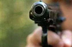 Сын украинского депутата подстрелил человека