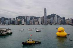 Творческий порыв или рекламная акция: гигантская утка в заливе Гонконга