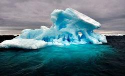 Почва на побережье Антарктиды размораживается быстрее, чем считали