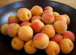 Какой урожай абрикосов ожидается в Армении?