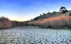 Как изменится климат в Украине в ближайшие 50 лет
