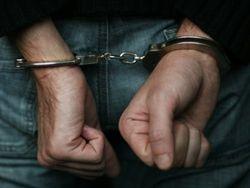 Задержан подозреваемый в убийстве двух девочек под Свердловском
