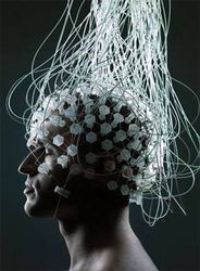 Новосибирские ученые,препарат,восстановление мозга