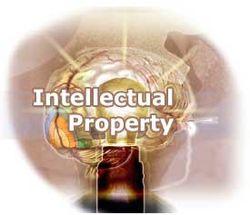 США включили Россию в список главных нарушителей интеллектуальных прав
