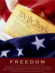 «We The People» требует отсоединения многих штатов от США
