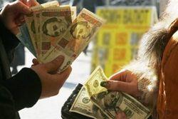 НБУ ожидает роста стабильности на наличном валютном рынке