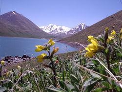 В Таджикистане пройдет форум развития горных регионов Центральной Азии