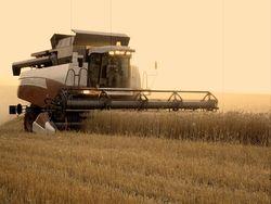Аграриям негде хранить новый урожай — СМИ