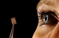 Японские ученые создали идеальную сетчатку глаза из стволовых клеток