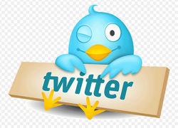 """Twitter отказал властям Турции в поиске авторов """"провокационных"""" твитов"""