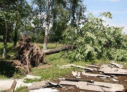 По Удмуртии пронесся ураган и сильный ливень
