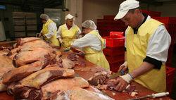 USDA:  на рынке свинины США ожидается снижение цен - трейдеры