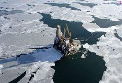 Ученые Норвегии не верят в миф о громадных запасах нефти в Арктике
