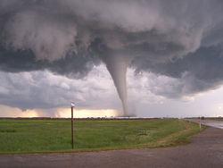 Торнадо станут обыденным делом в Украине – метеорологи